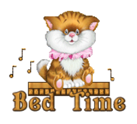 Bed Time - CuteKittenSitting