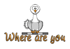 Where are you - OstrichWithBlinkie