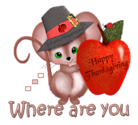 Where are you - ThanksgivingMouse