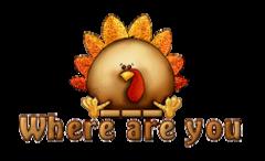 Where are you - ThanksgivingCuteTurkey