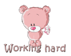 Working hard - ShyTeddy