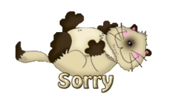 Sorry - KittySitUps