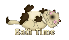 Bath Time - KittySitUps