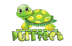 Purrfect - CuteTurtle