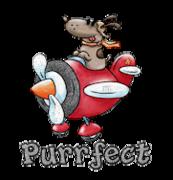 Purrfect - DogFlyingPlane