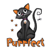 Purrfect - HalloweenKittySitting