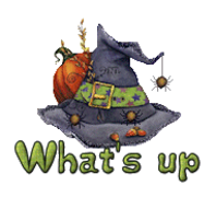 What's up - CuteWitchesHat
