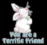 You are a Terrific Friend - HippityHoppityBunny