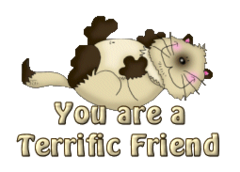You are a Terrific Friend - KittySitUps
