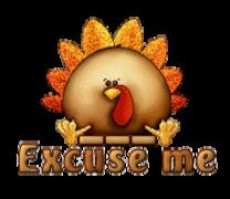 Excuse me - ThanksgivingCuteTurkey