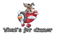 What's for dinner - DogFlyingPlane