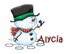 Alycia - Snowman&Bird