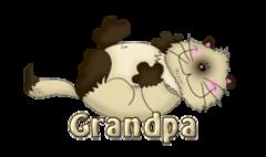 Grandpa - KittySitUps