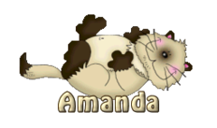 Amanda - KittySitUps