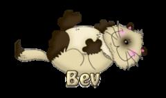 Bev - KittySitUps