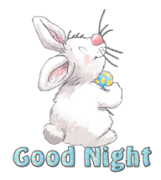 Good Night - HippityHoppityBunny