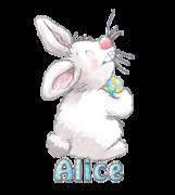 Alice - HippityHoppityBunny