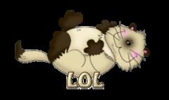 LOL - KittySitUps