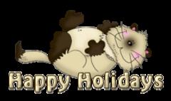 Happy Holidays - KittySitUps