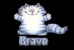 Bravo - CoolDanceMoves
