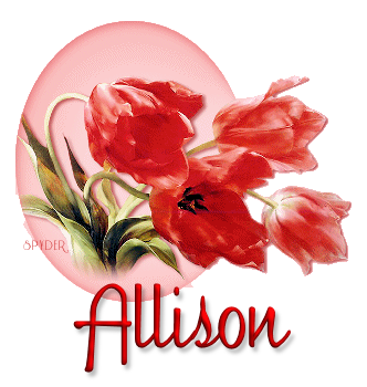 Allison redtulipshello