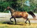 AA-ALDUROSE #153181 (Elkin++ x  Almaviva, by Wielki Szlem) 1977 bay mare bred by Mike Nichols