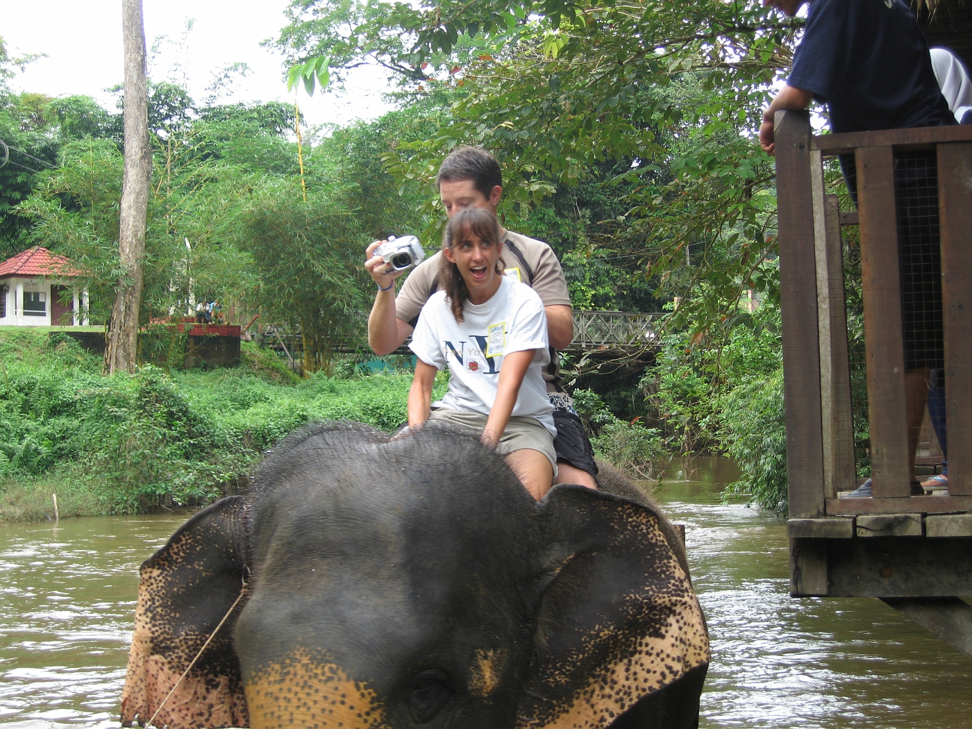 Riding Elephant in River