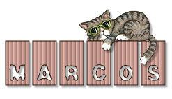 marcos-gailz0406-MJR_tiny-cat-topper.jpg
