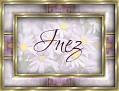 Inez - Daisy
