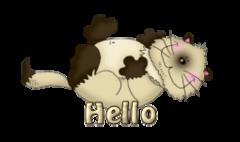 Hello - KittySitUps
