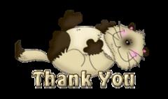 Thank You - KittySitUps