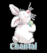 Chantal - HippityHoppityBunny