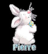 Pierre - HippityHoppityBunny