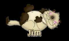 Jim - KittySitUps