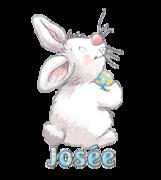 Josee - HippityHoppityBunny