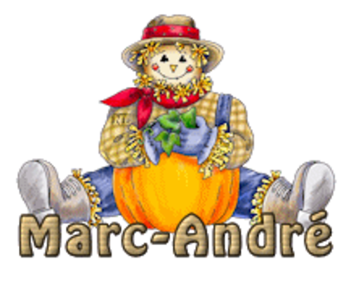 Marc-Andre - AutumnScarecrowSitting