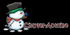 Charles-Antoine - Snowman&Bird