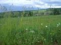 Landschaft Russland