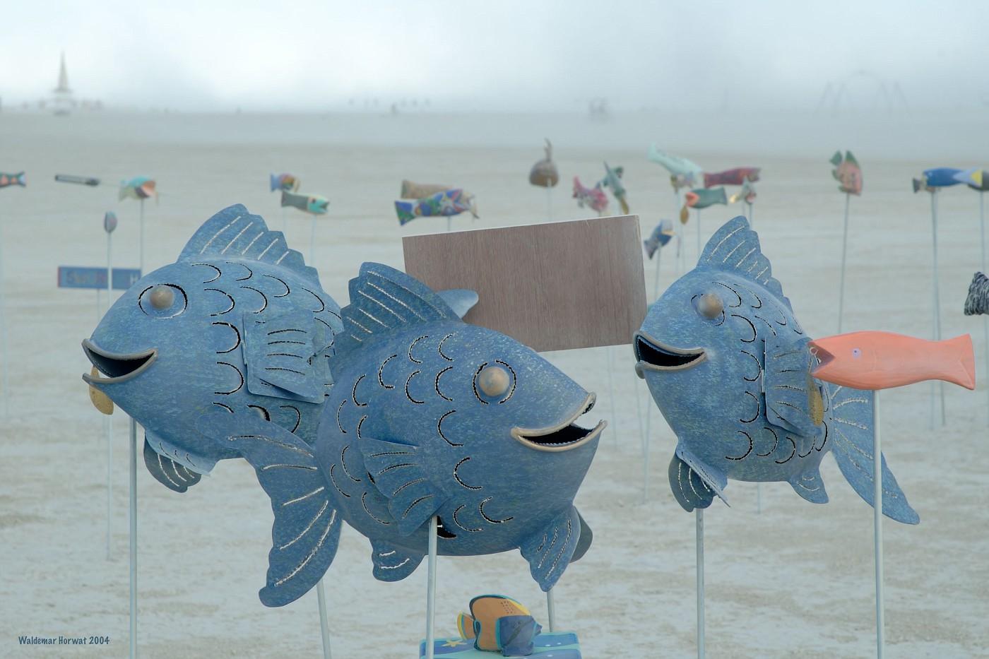 Playafish