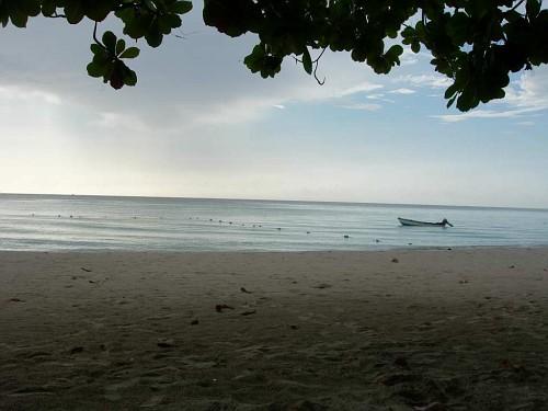 CCLP Beach