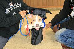 Graduation-10am (149)