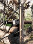 061125 Zoo 1048