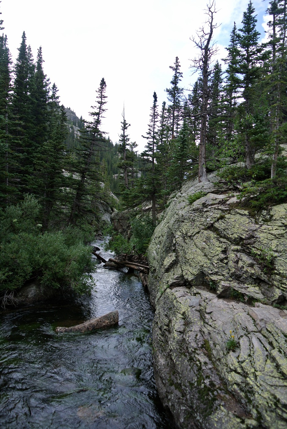 View of Glacier Creek from the bridge