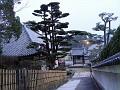 One of Nara's streets at dusk