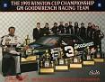 1994 Dale Earnhardt 800