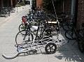 219 bikes