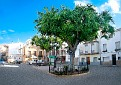 Calle Ayora 6096
