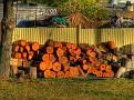 Stuart Town woodpile