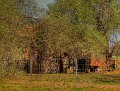 Farm shed 002