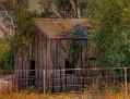 Farm shed 003